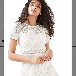 TOPSHOP NWT Cream fluted sleeve lace cream dress